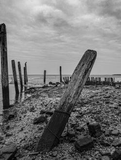 Haventje van Sil (Texel) 8738