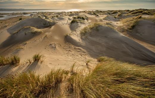 De Hors (Texel) 8928